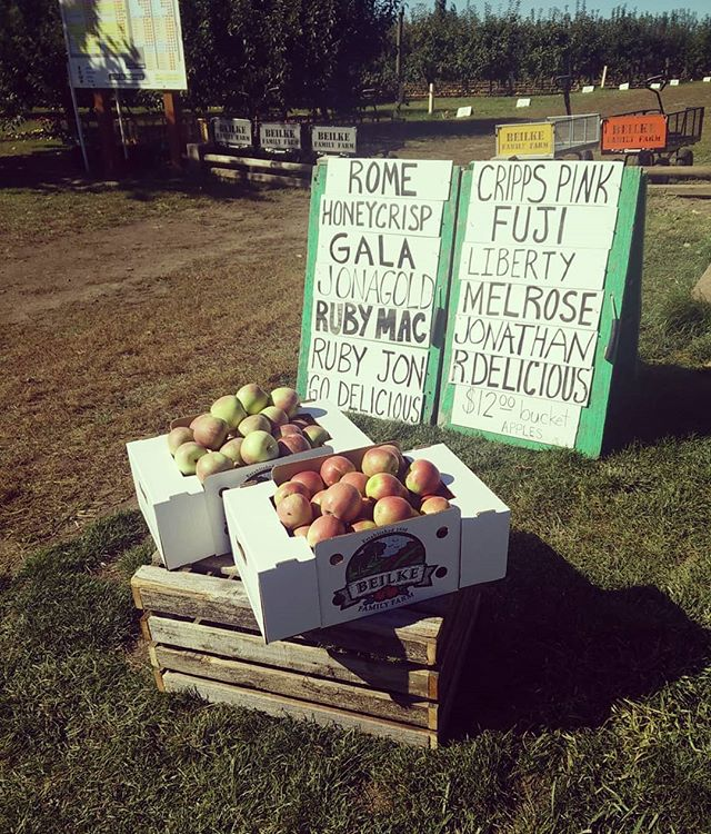 The first storing apples of the season are ready! Cripps Pink and Fuji have been added. This makes 13 varieties to choose from!  HOURS: Mon-Sat:8a.m.-6p.m. Sunday:11a.m.-6p.m.  4925 Rockdale ST NE, Brooks, OR BEILKEFAMILYFARM.COM  #upickapples #upick #wvupick #appleorchard #oregonorchards