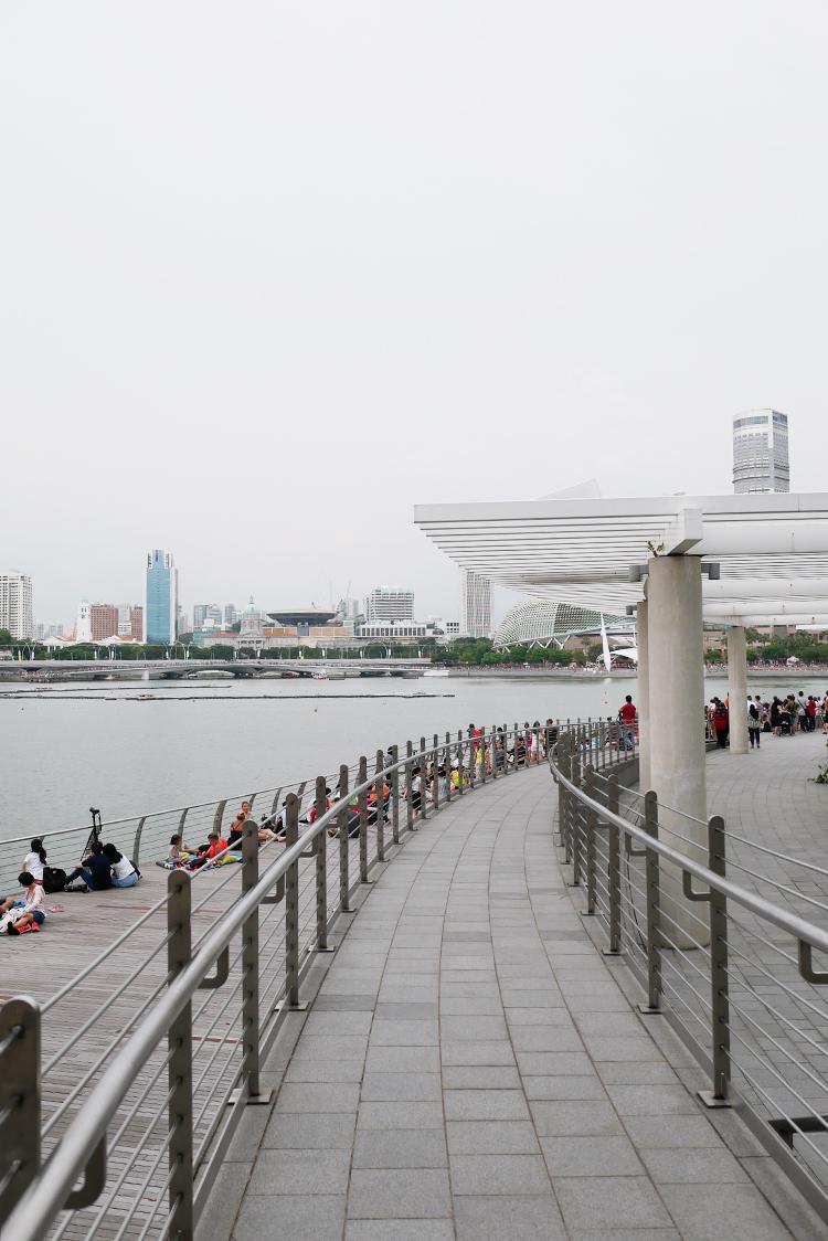 Singapore_Day_1_Changi_Airport_York_Hotel_Marina_Bay_Sands.jpg