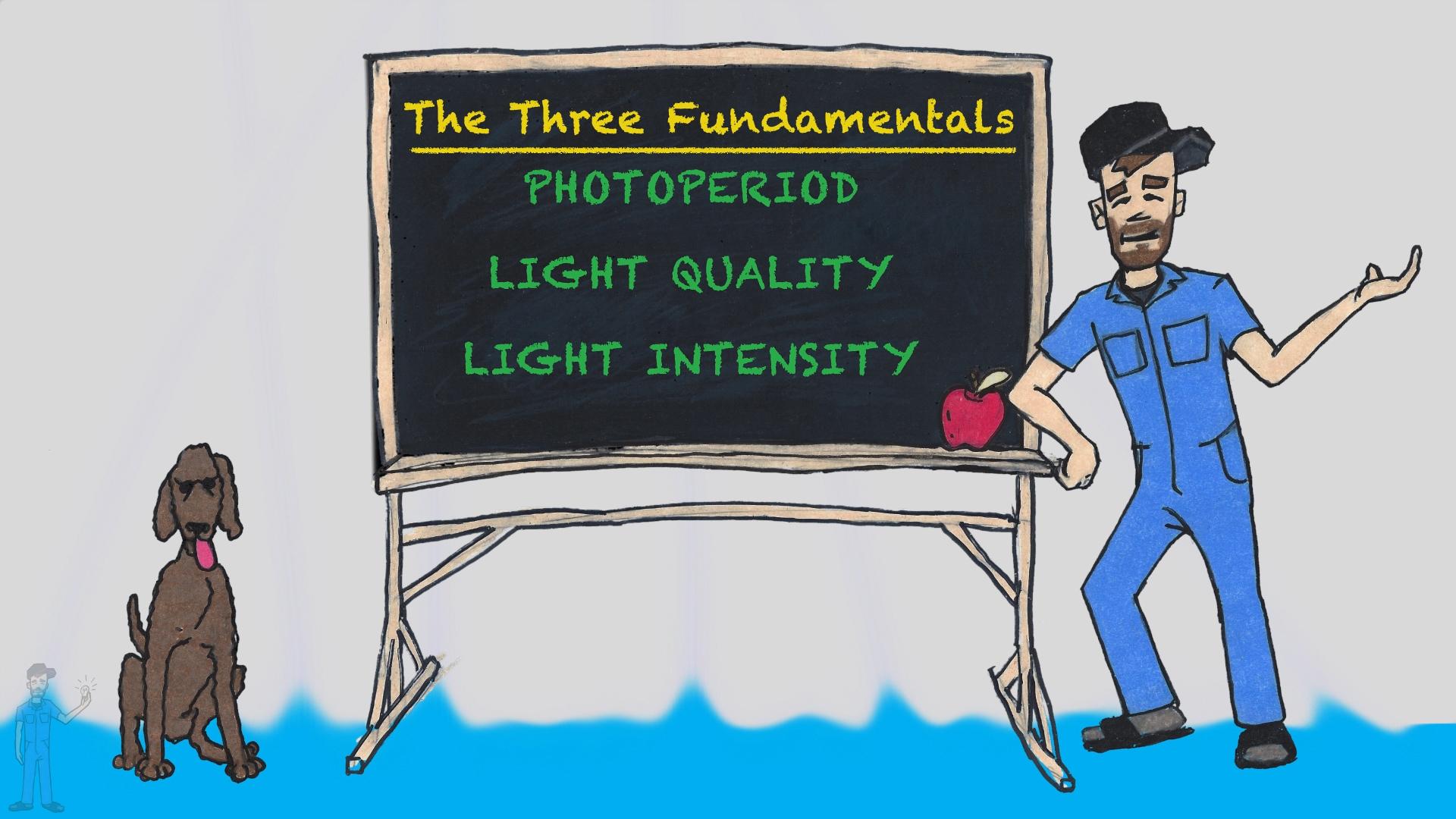 1. Three Fundamentals.jpg