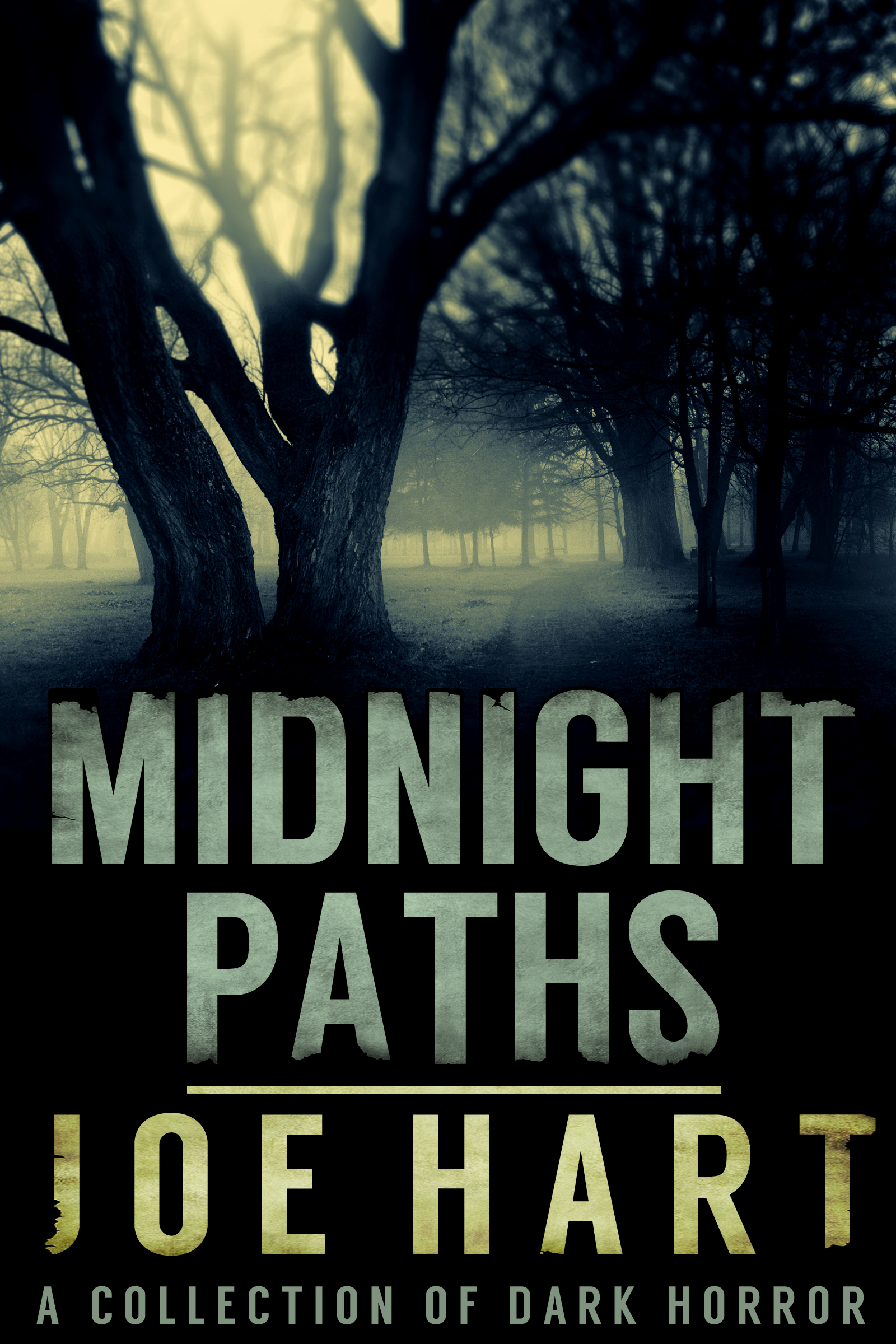 Midnight_Paths2-1.jpg