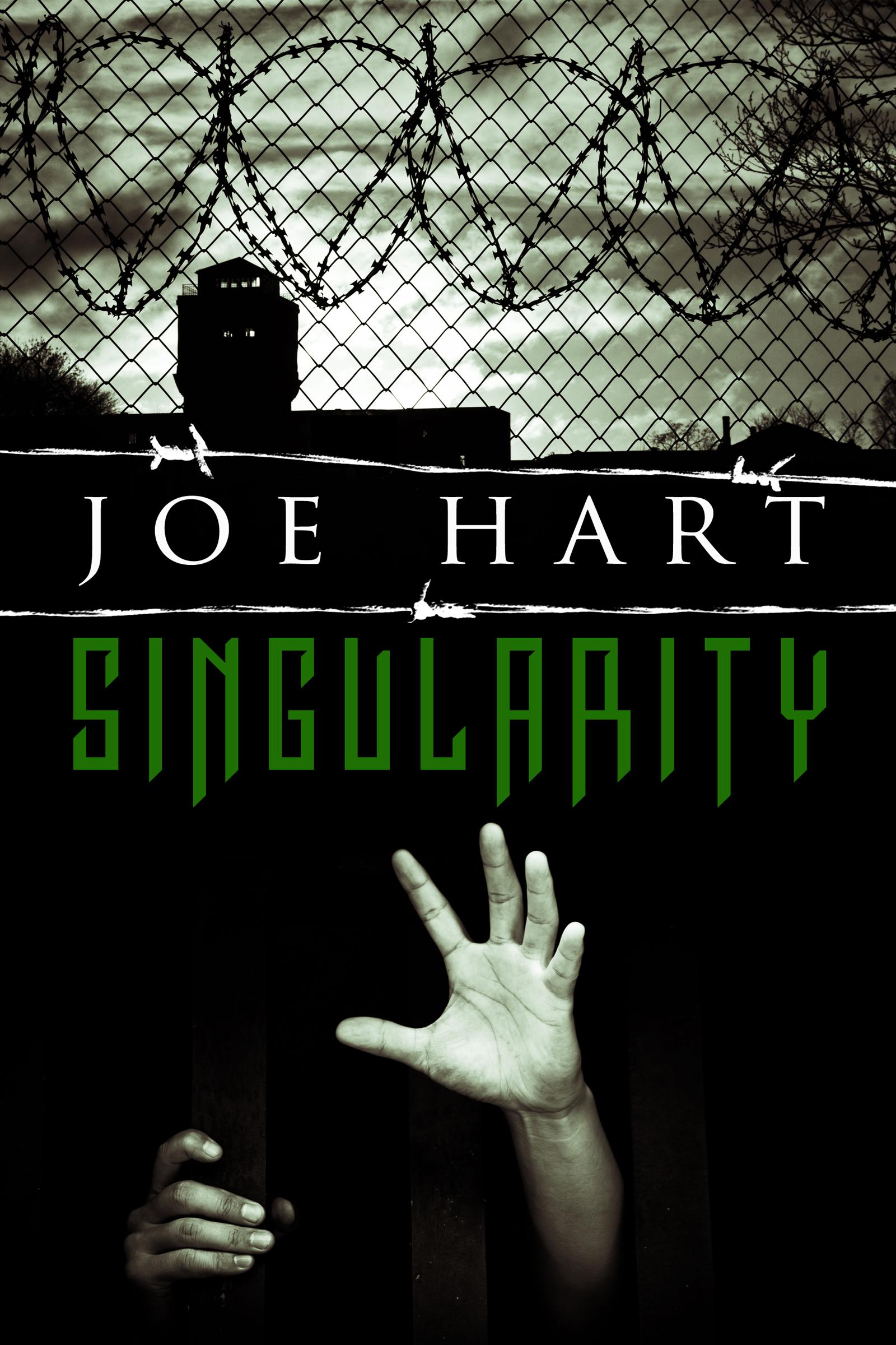 Singularity ebook.jpg