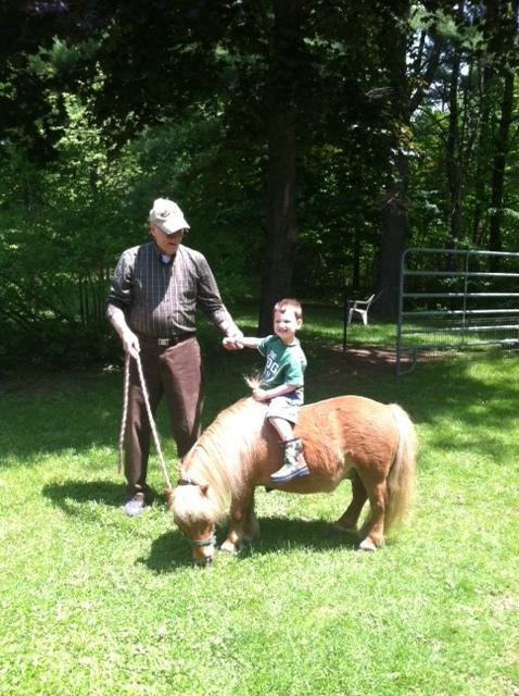 Rescue horseRH-Whiskey.JPG