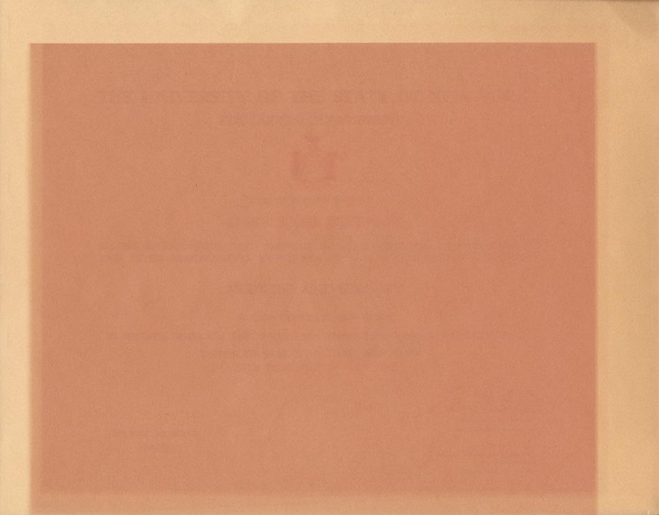 60_Sun Bleached Diploma 1_2.jpg