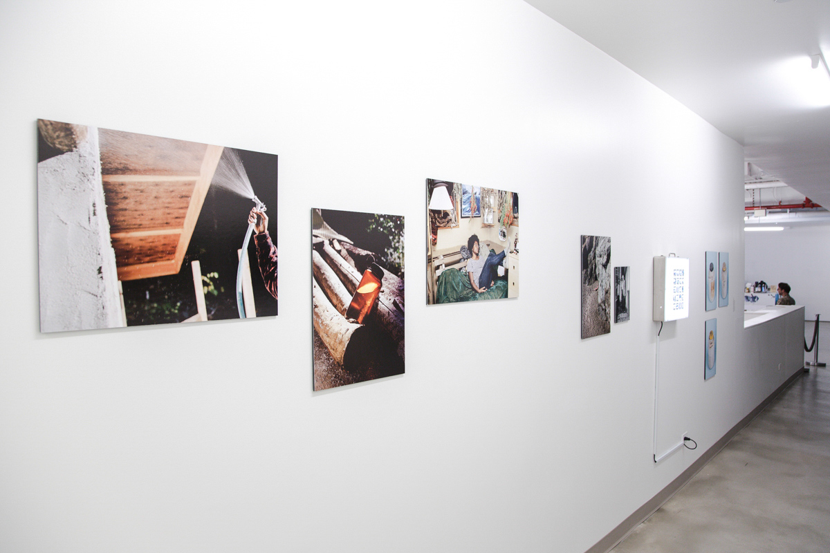 My First Wife Stella,  Exhibition View,  BRIC Biennial , BRIC Arts Media, Brooklyn, 2014