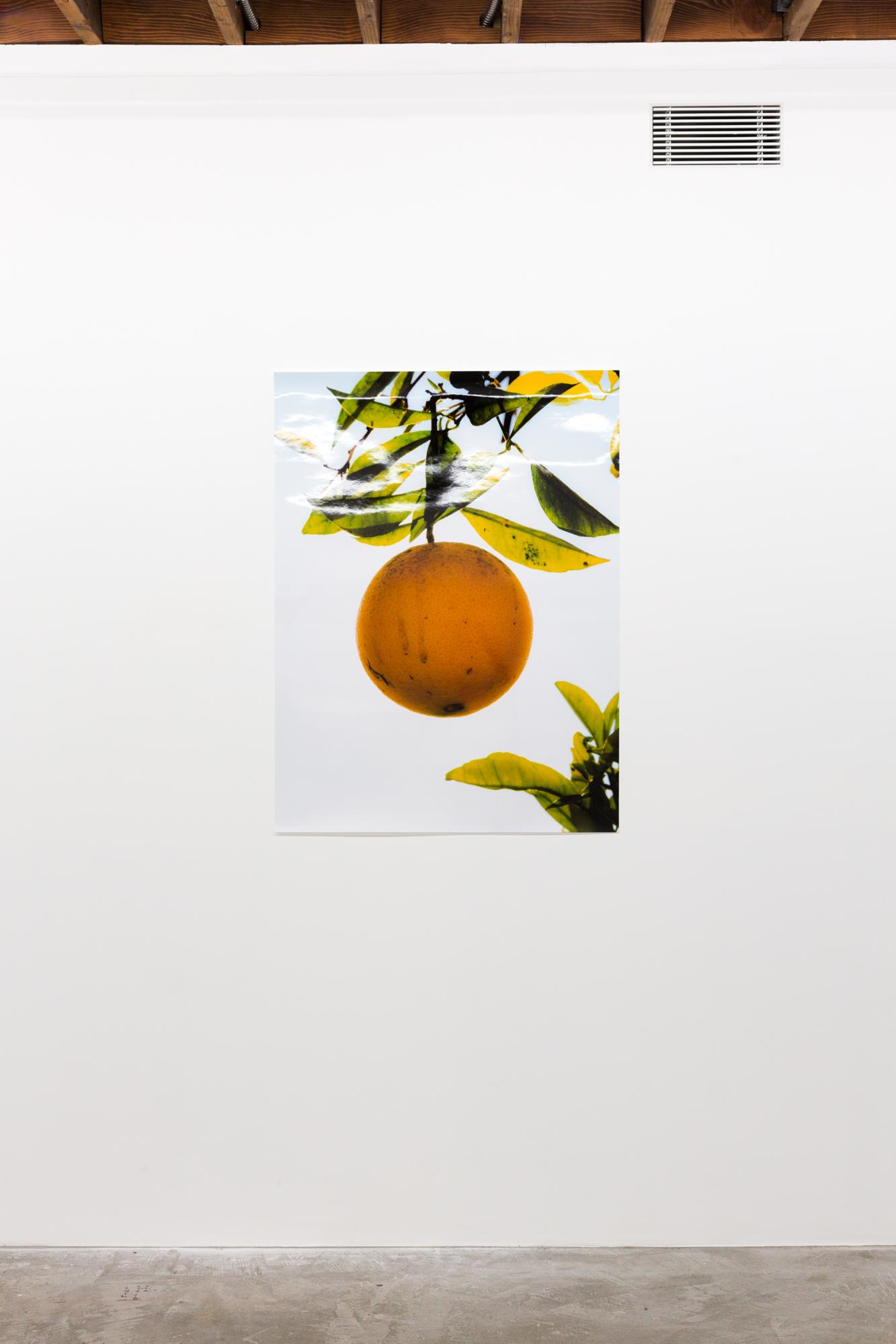Orange II, December 31, 2017, Huntington Beach, CA , 2018, Chromira print, 40 x 30 inches