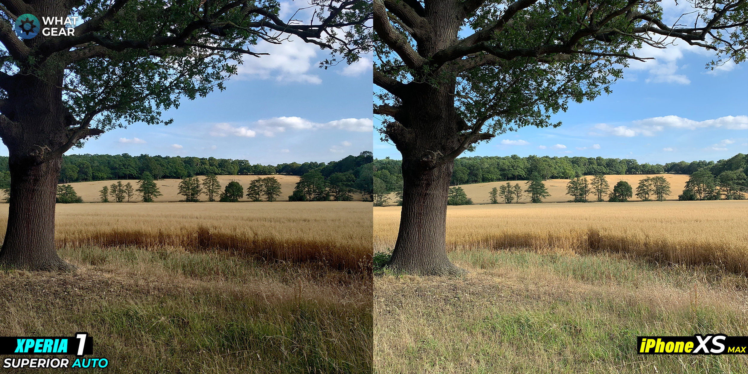 xperia 1 vs iphone xs camera 1.jpg
