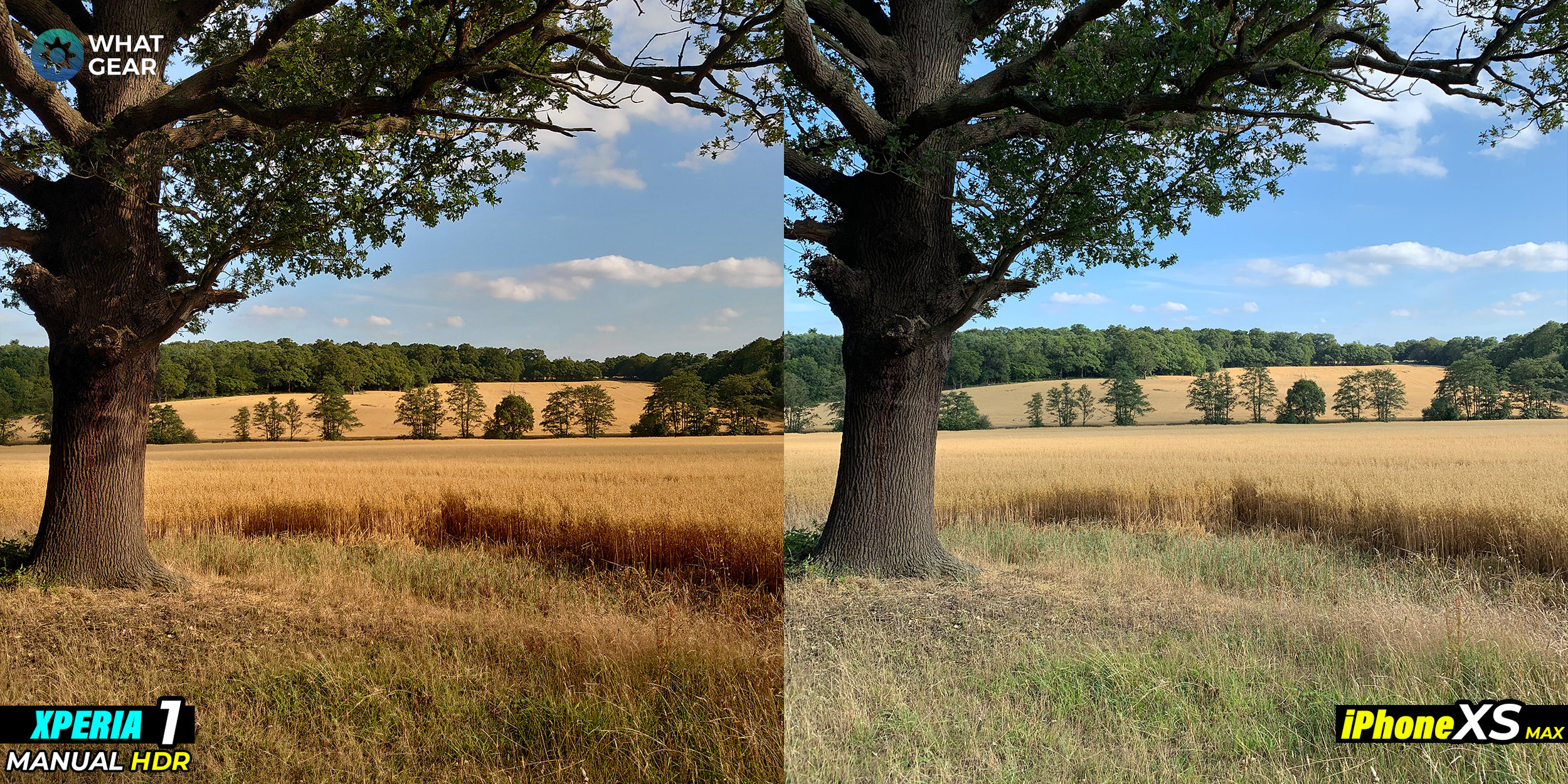 xperia 1 vs iphone xs camera 3.jpg