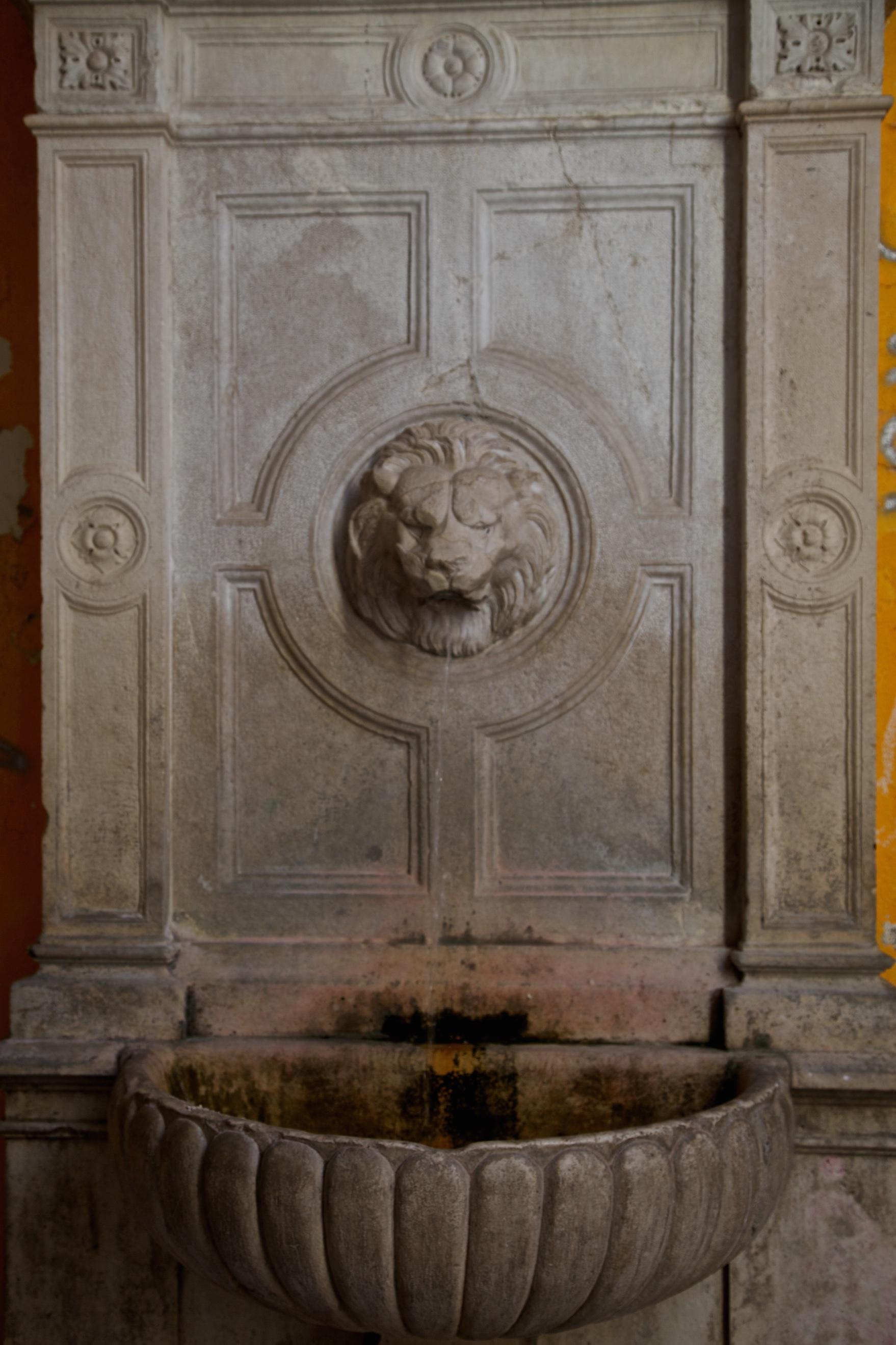 A lion's spit. Split, Croatia