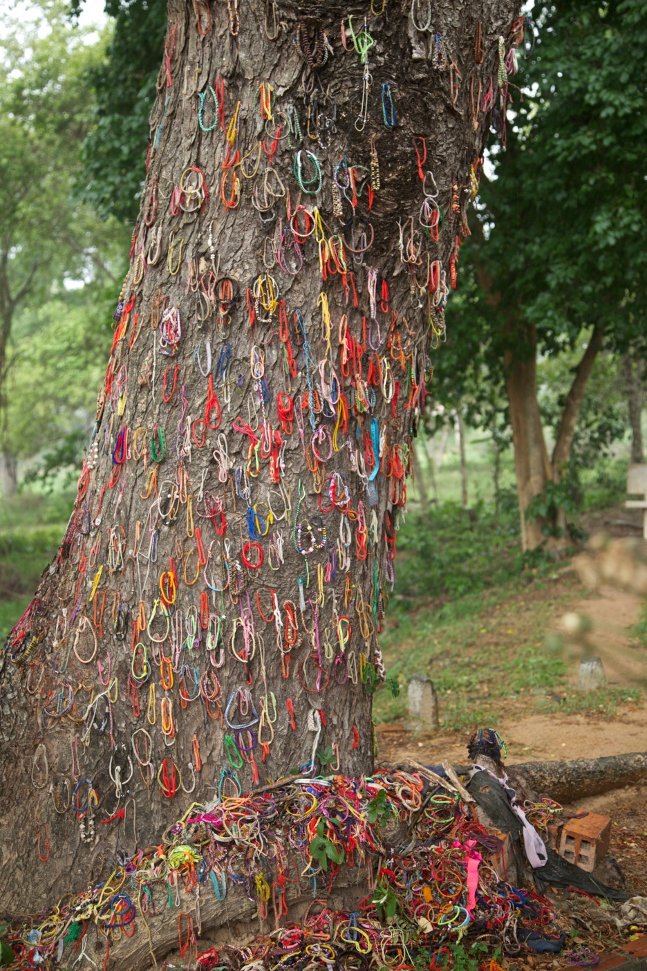 In remembrance of the children killed by being thrown against this very tree. The Killing Fields, Cambodia.