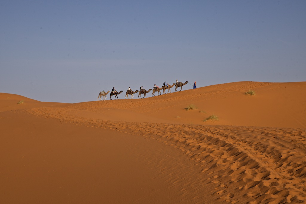 Desert caravan, crossing the Sahara.