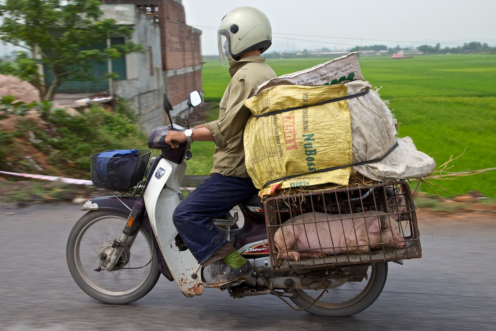 Bacon delivery man. Viet Nam