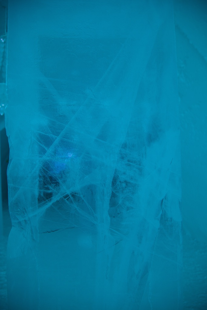 Spiderwebs at 50 degrees below zero.