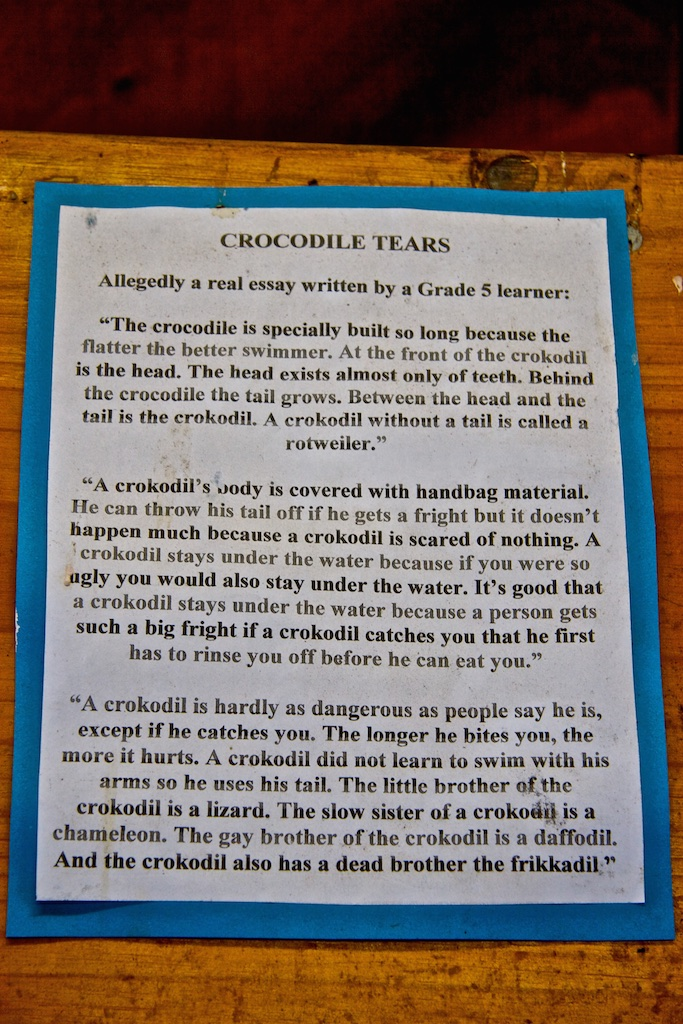 A crocodile essay.