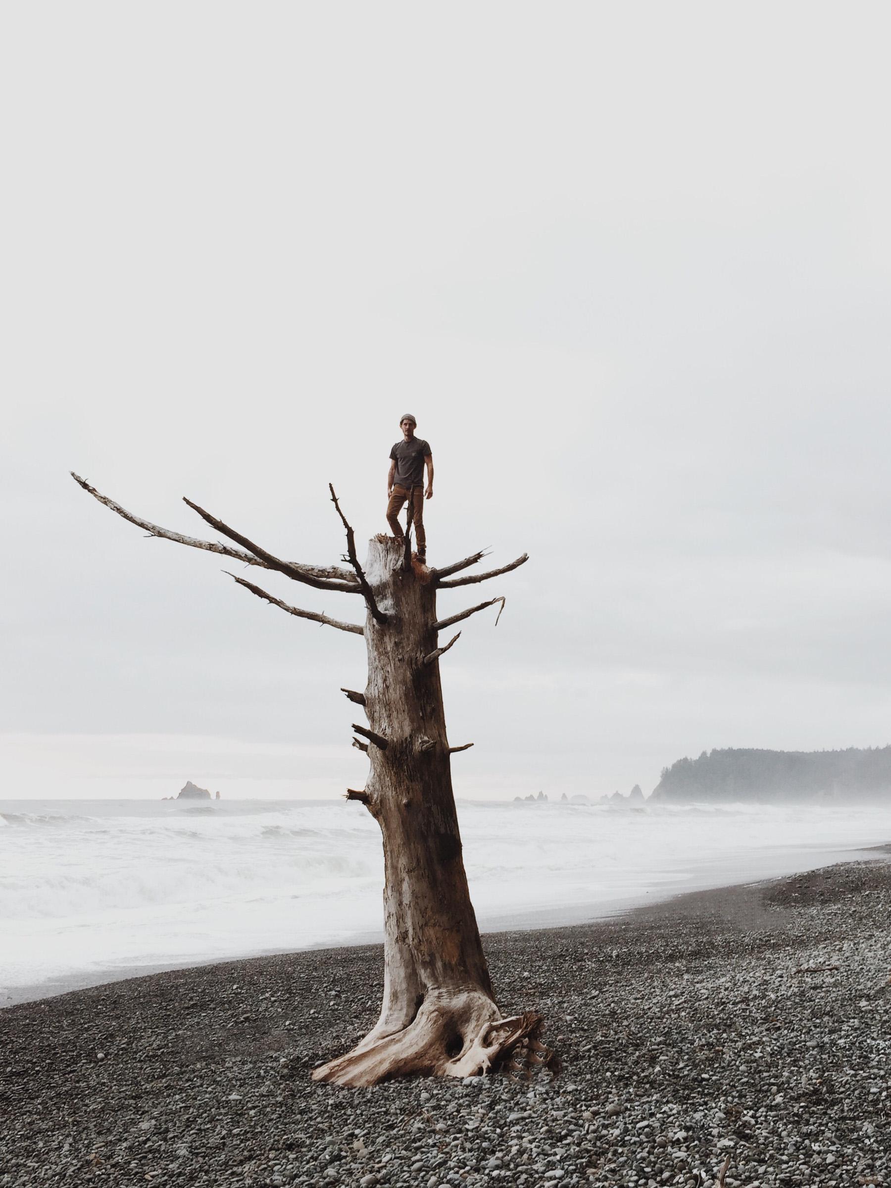 Rialto Beach Aventure | Katch Silva