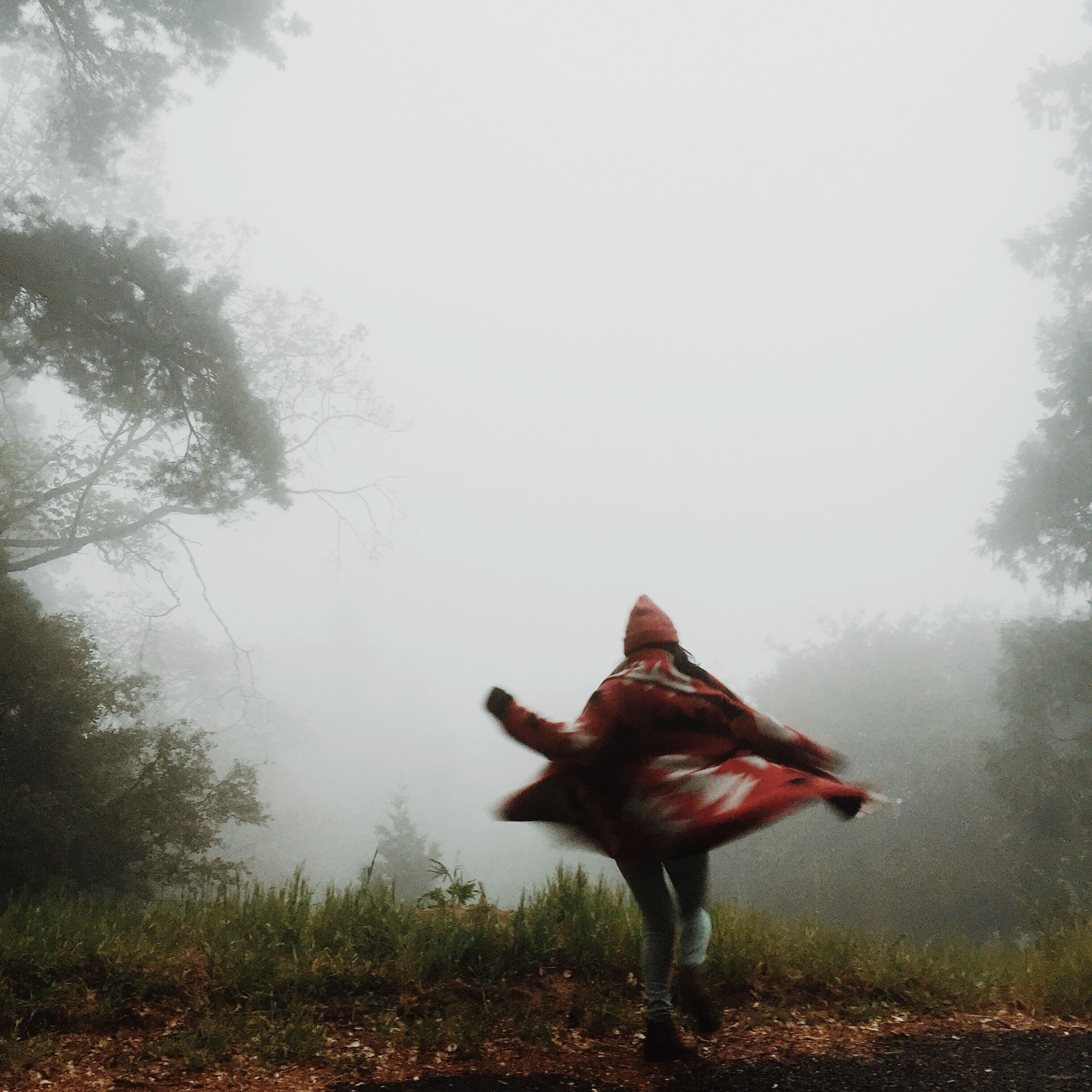 Motion in fog | Katch Silva