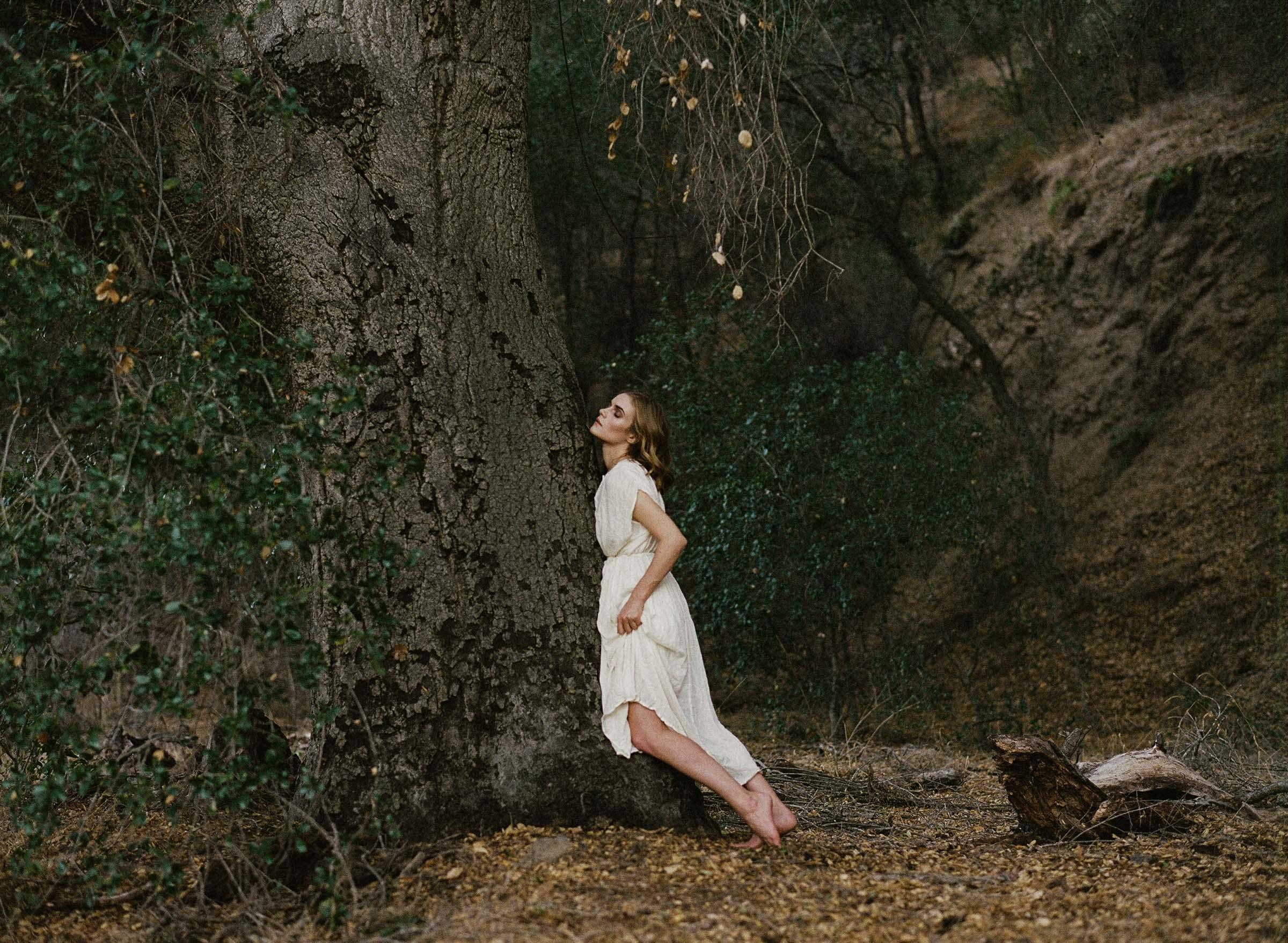 meredith-tree-003.jpg