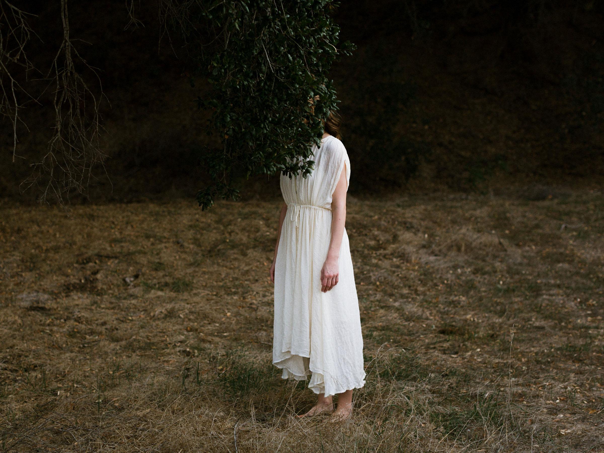 meredith-tree-007.jpg
