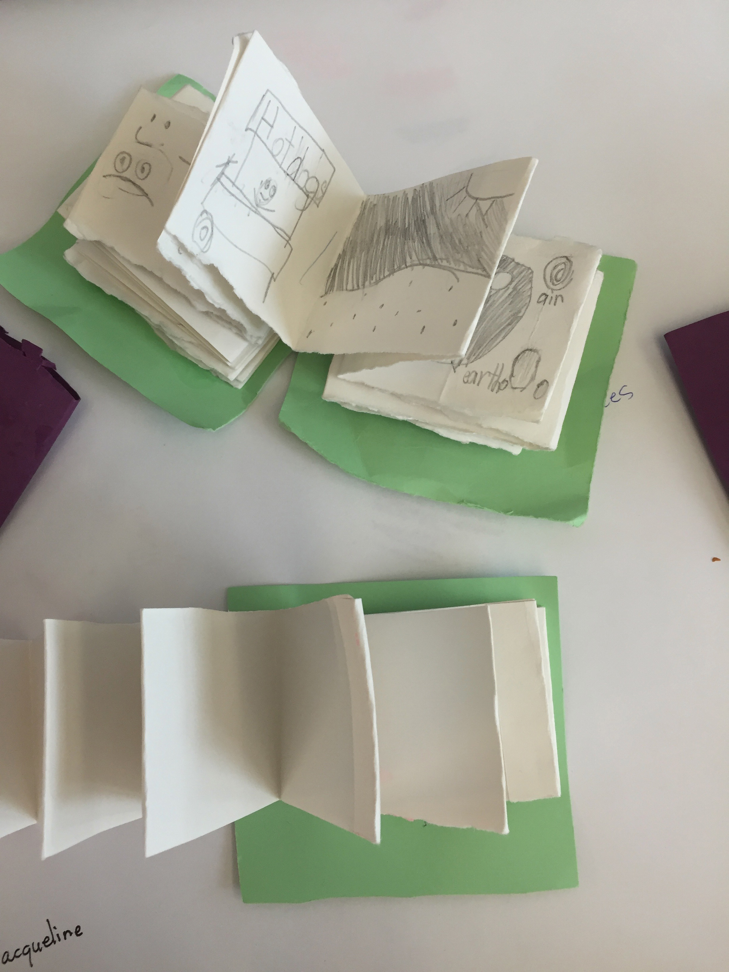 Accordian Fold Books.jpg