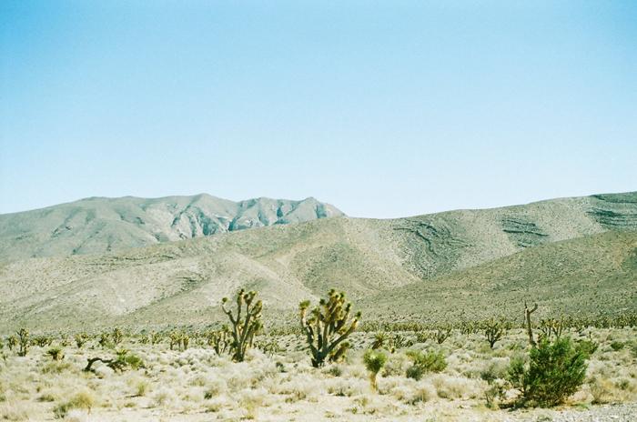 gaby j desert 4