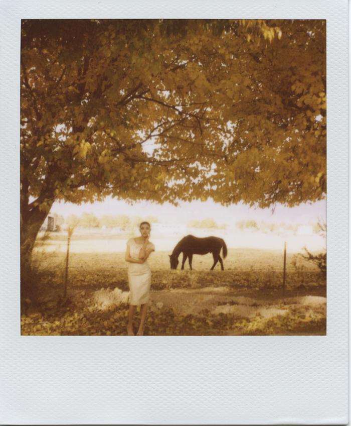 gaby j photography bride horse fall leaves polaroid