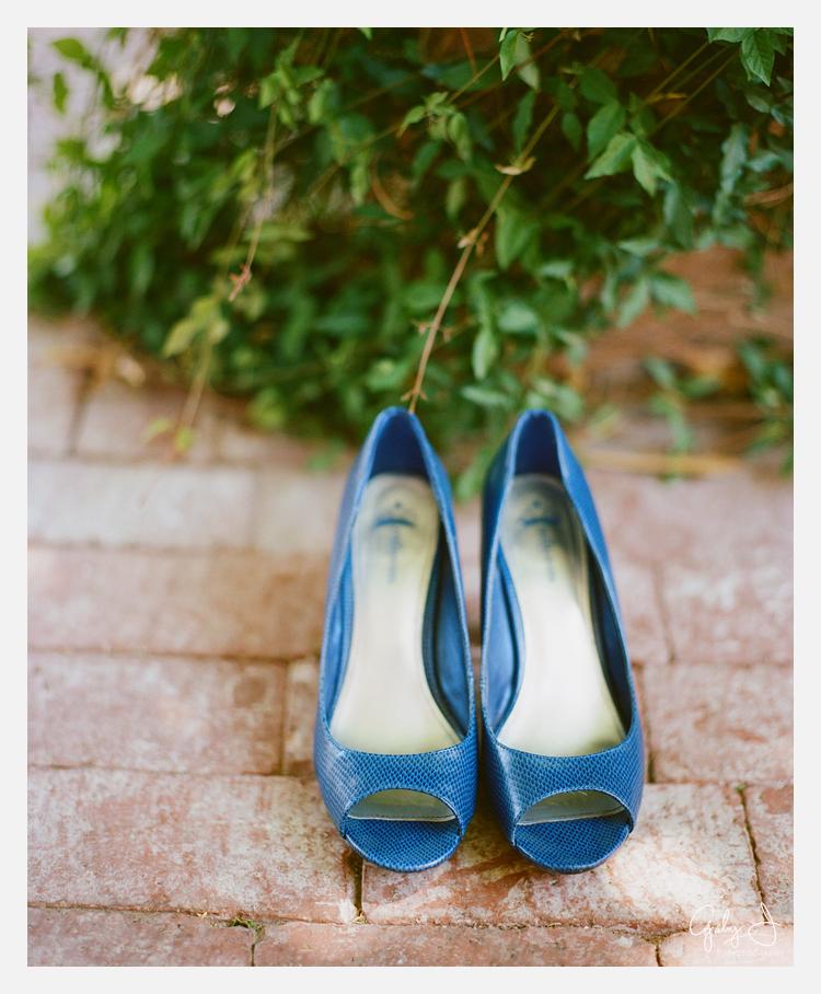 DIY las vegas backyard wedding Gaby J Photography_001