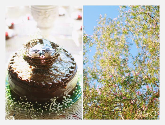 DIY las vegas backyard wedding Gaby J Photography_058