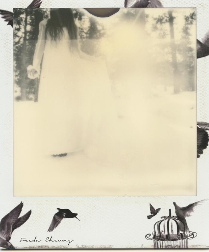 polaroid 1 sml