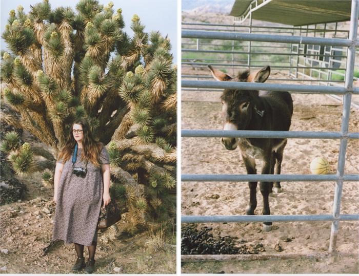 exploring the nevada desert gaby j photography_02