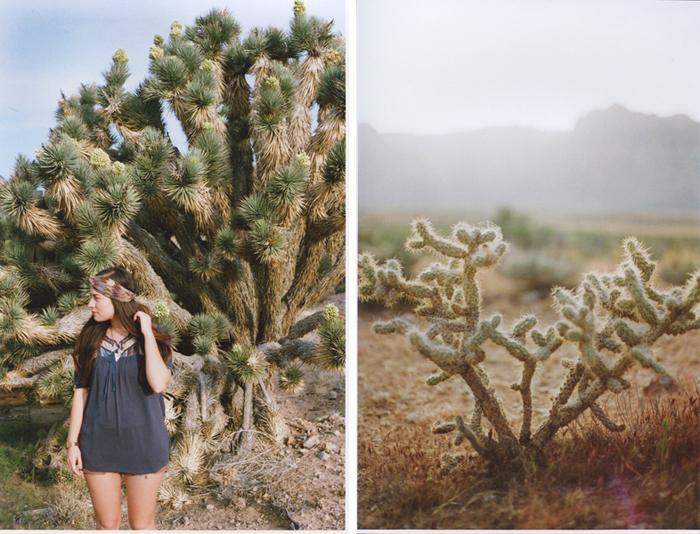 exploring the nevada desert gaby j photography_10