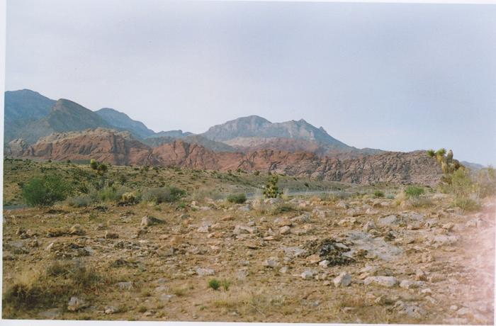 exploring the nevada desert gaby j photography_12