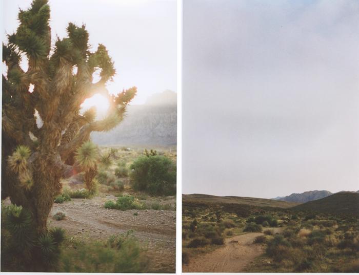 exploring the nevada desert gaby j photography_15