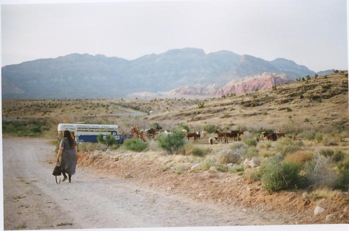 exploring the nevada desert gaby j photography_19