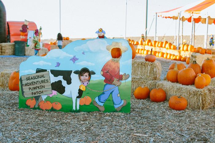 las vegas stu millers pumpkin patch halloween photography 02