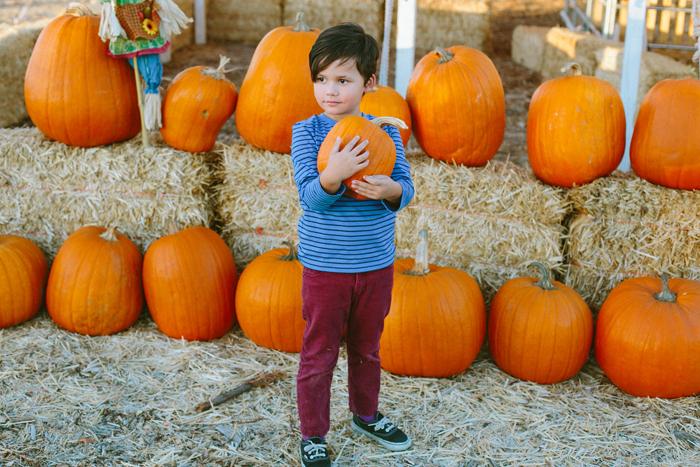 las vegas stu millers pumpkin patch halloween photography 04