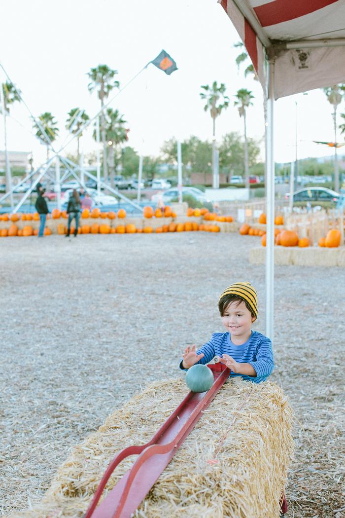 las vegas stu millers pumpkin patch halloween photography 08