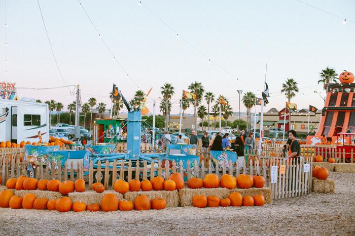 las vegas stu millers pumpkin patch halloween photography 11