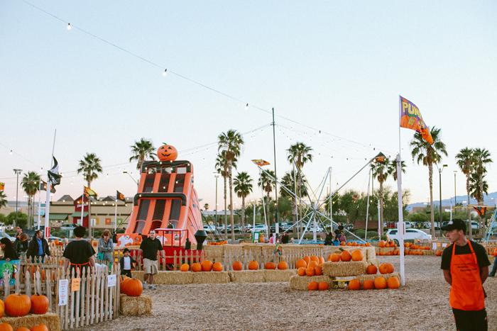 las vegas stu millers pumpkin patch halloween photography 15