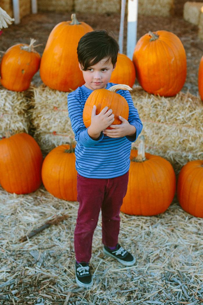 las vegas stu millers pumpkin patch halloween photography 16