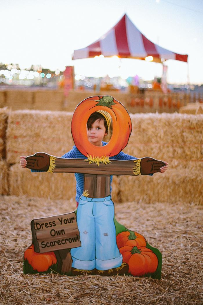 las vegas stu millers pumpkin patch halloween photography 22