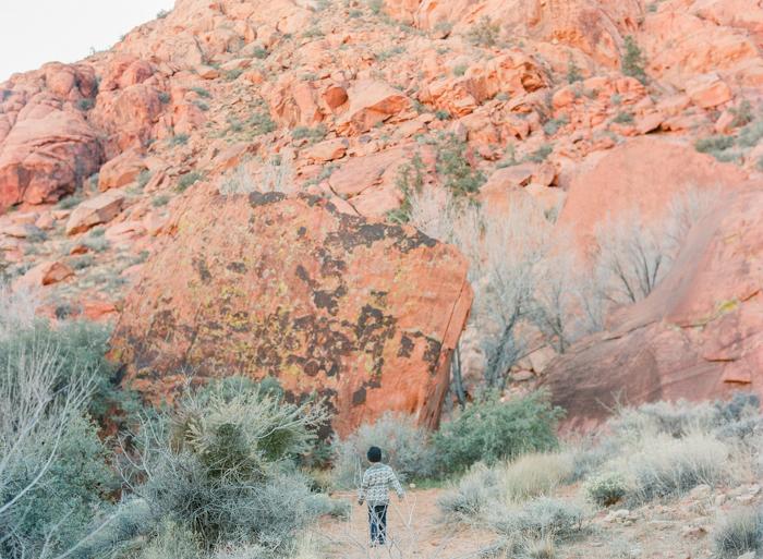 red rock state park desert life film 1