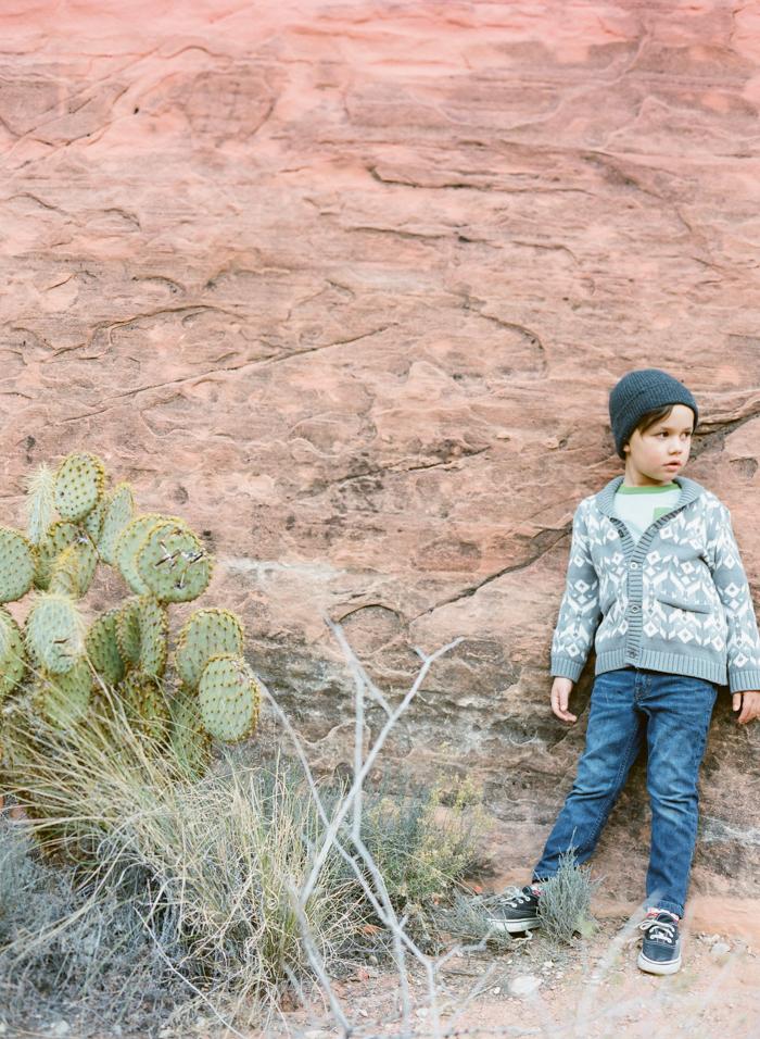 red rock state park desert life film 2