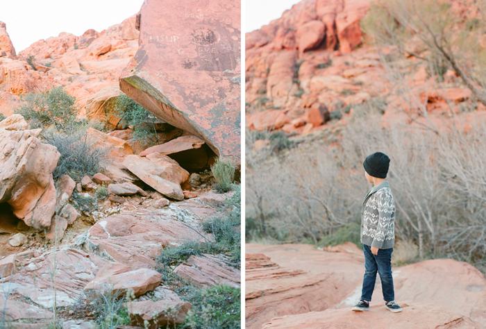 red rock state park desert life film 5