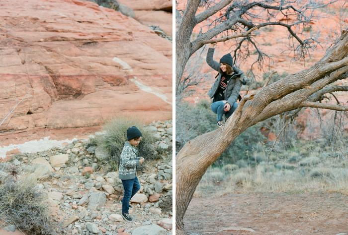 red rock state park desert life film 11