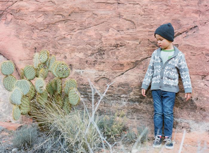 red rock state park desert life film 13
