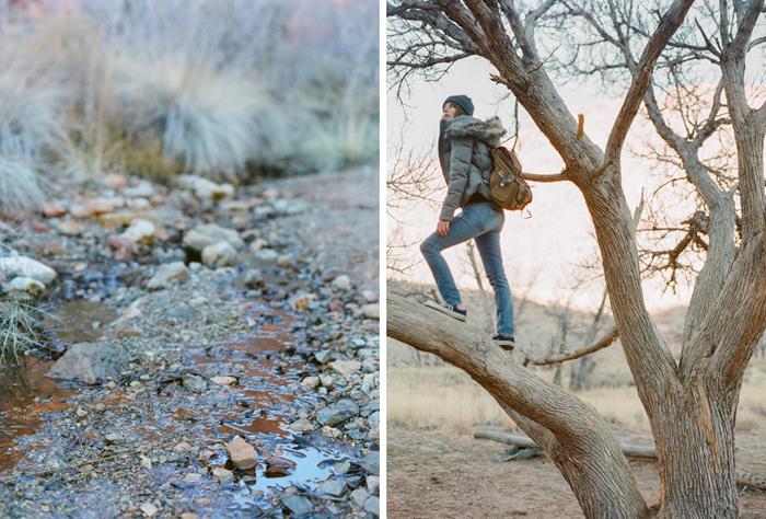 red rock state park desert life film 14