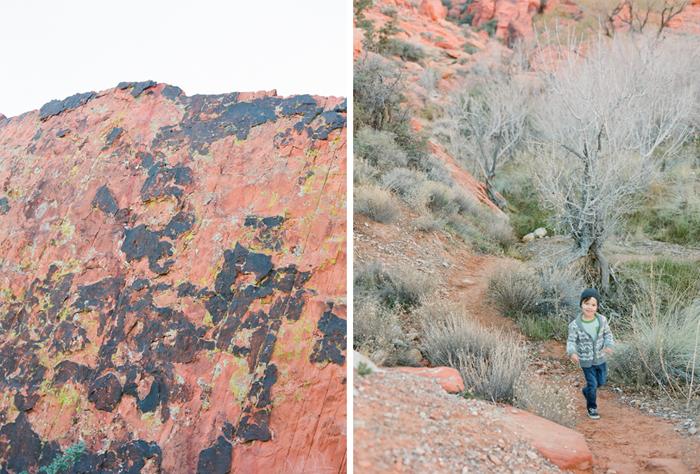 red rock state park desert life film 17