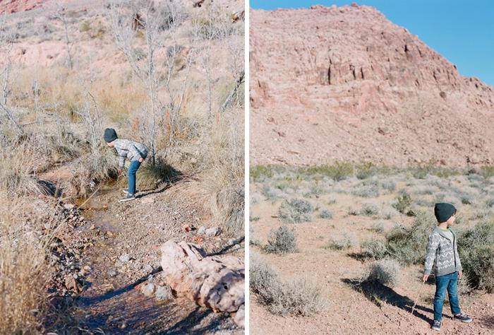 red rock state park desert life film 20