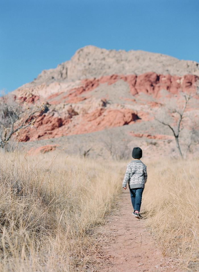 red rock state park desert life film 23