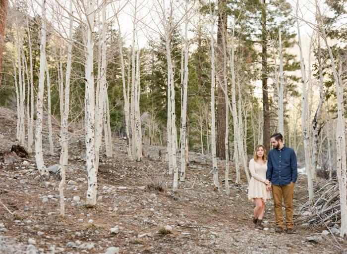 woodsy mount charleston engagement session 028