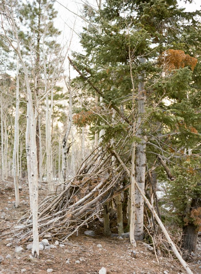 wooded teepee in mt charleston